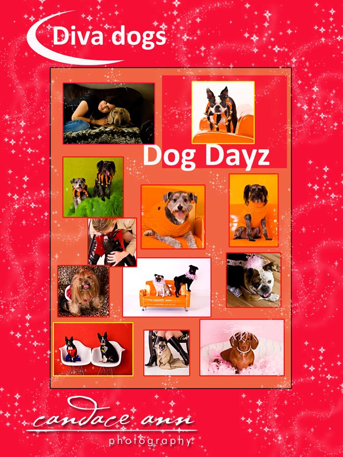 Dog days 09